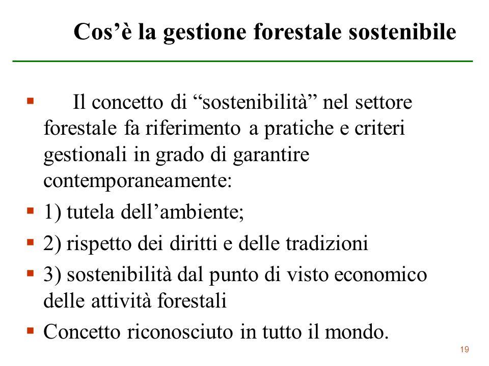 Cos'è la gestione forestale sostenibile