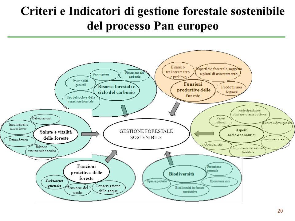 Salute e vitalità delle foreste protettive delle foreste