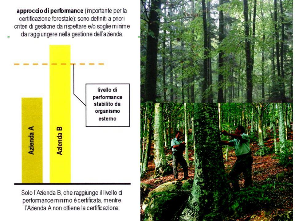 Per essere certificati bisogna superare tutte le soglie critiche presenti nello standard di certificazione. Questo vale sia per il monitoraggio che per il taglio dei boschi.