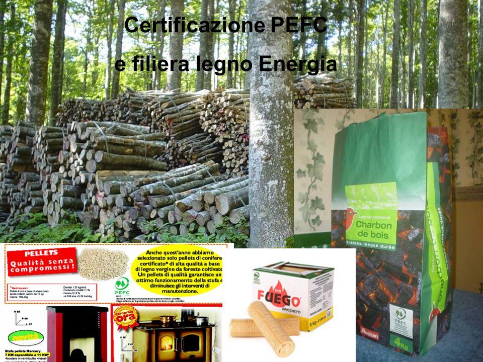 e filiera legno Energia