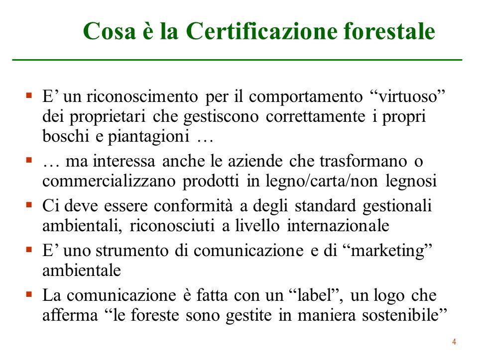 Cosa è la Certificazione forestale
