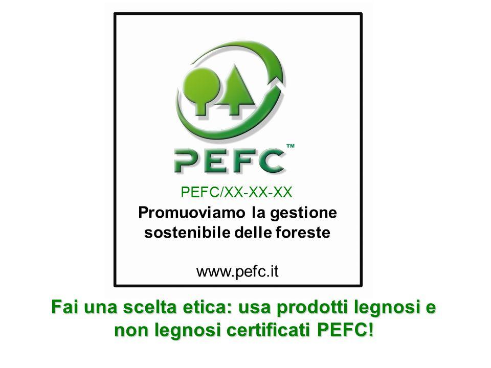 Promuoviamo la gestione sostenibile delle foreste