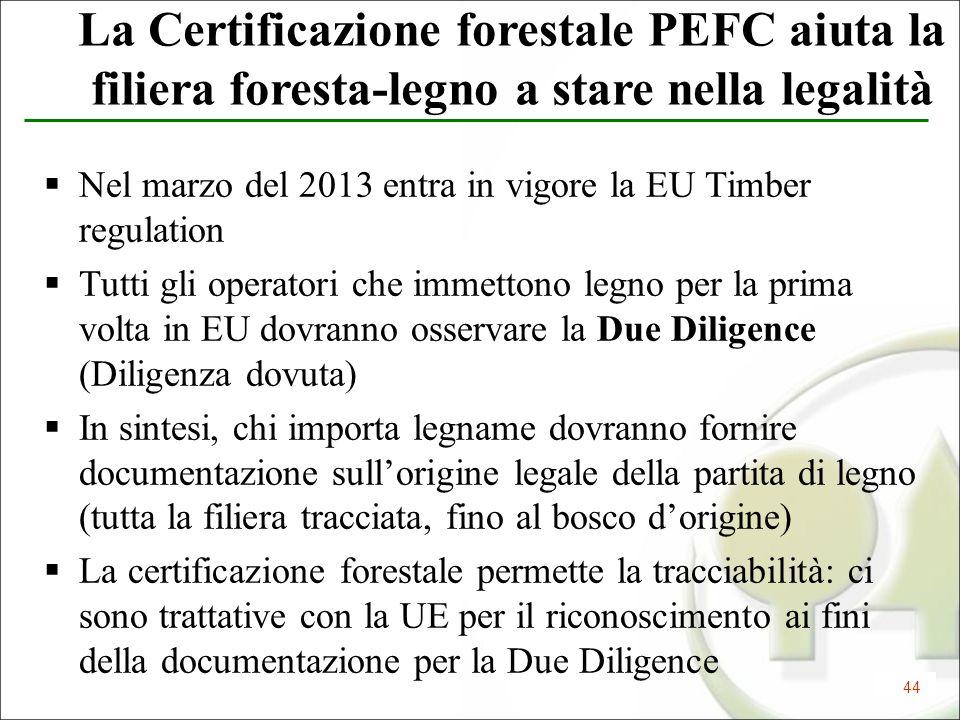 La Certificazione forestale PEFC aiuta la filiera foresta-legno a stare nella legalità