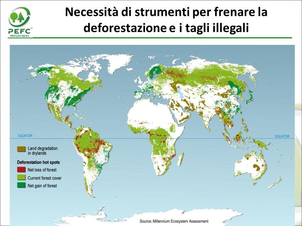 Necessità di strumenti per frenare la deforestazione e i tagli illegali