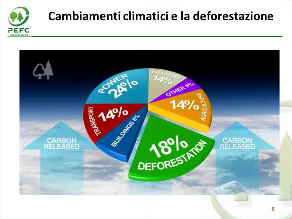 Cambiamenti climatici e la deforestazione