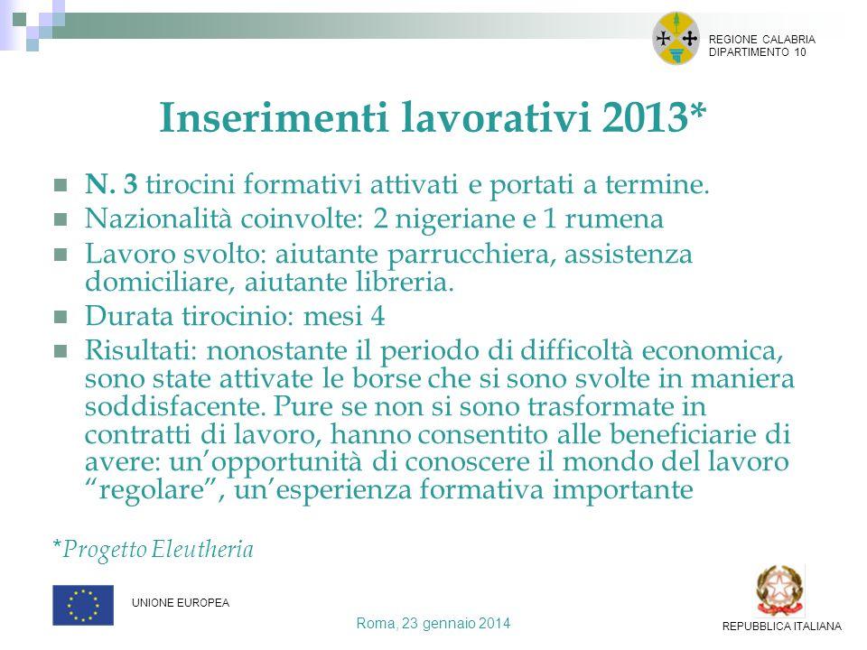 Inserimenti lavorativi 2013*