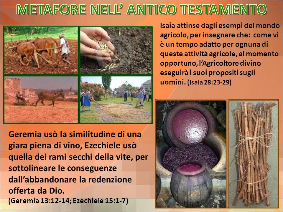 METAFORE NELL' ANTICO TESTAMENTO