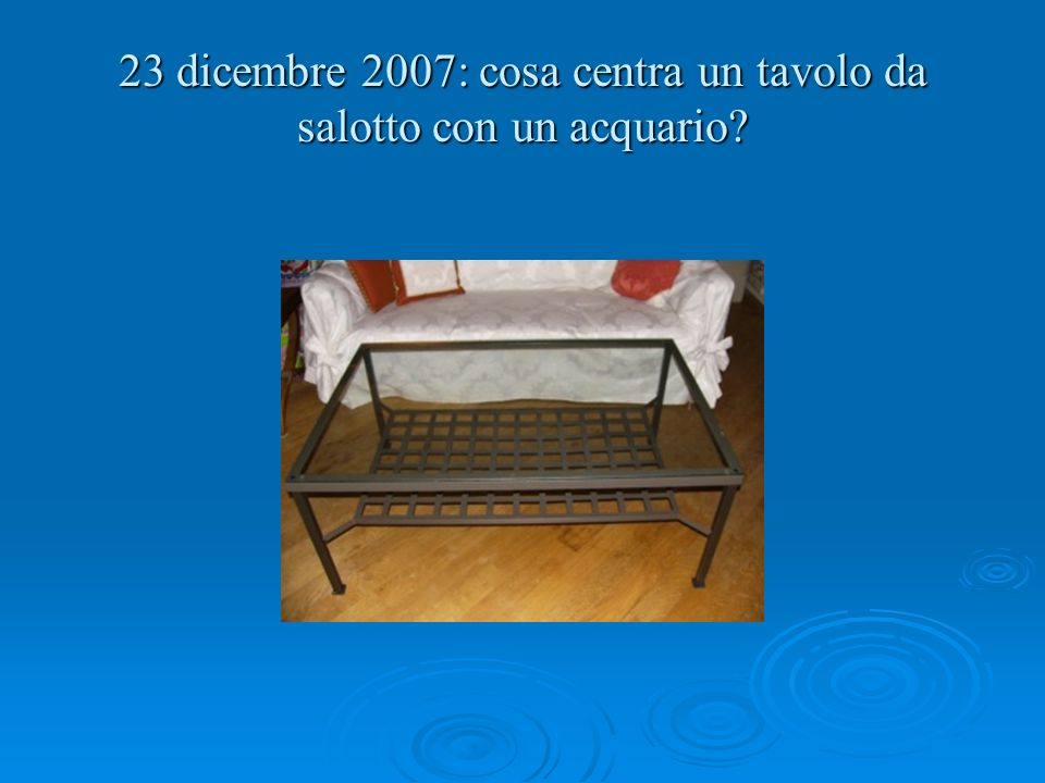 23 dicembre 2007: cosa centra un tavolo da salotto con un acquario