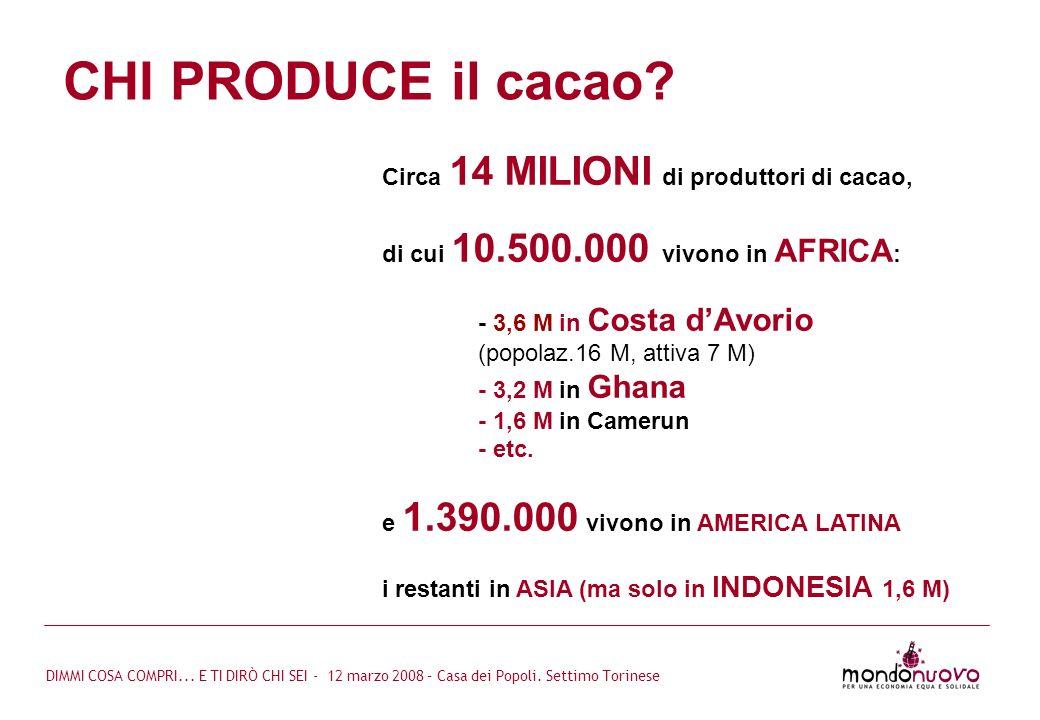 CHI PRODUCE il cacao Circa 14 MILIONI di produttori di cacao,