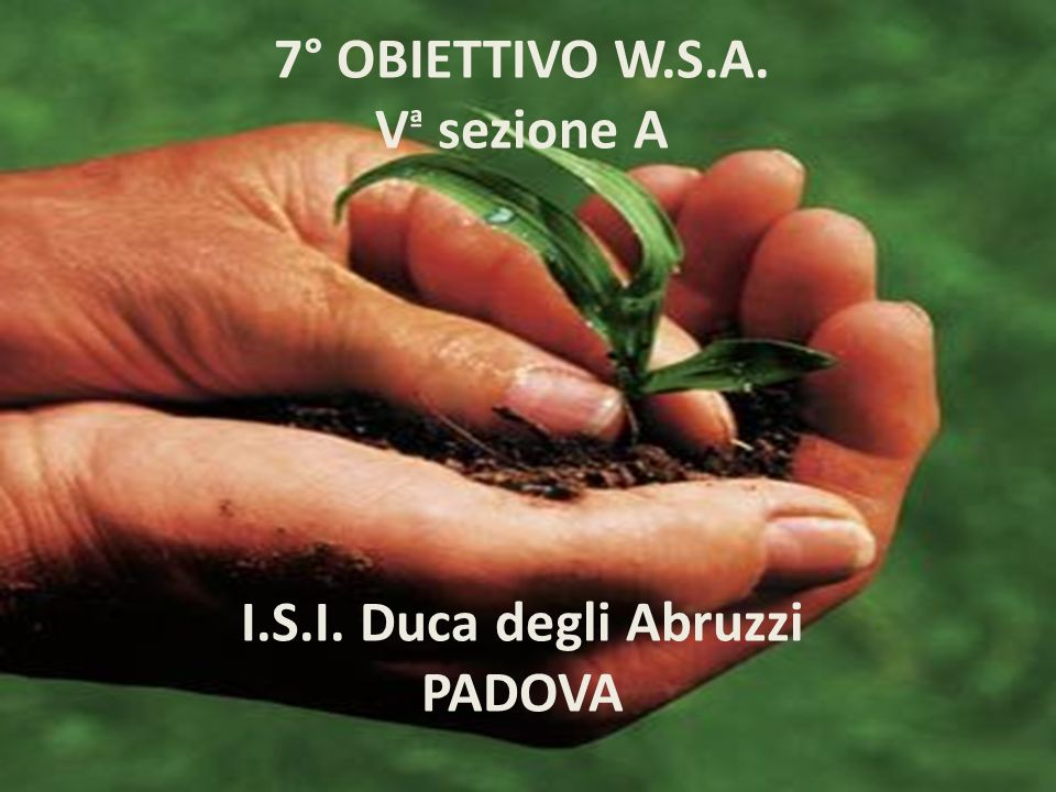7° OBIETTIVO W.S.A. Vª sezione A I.S.I. Duca degli Abruzzi PADOVA