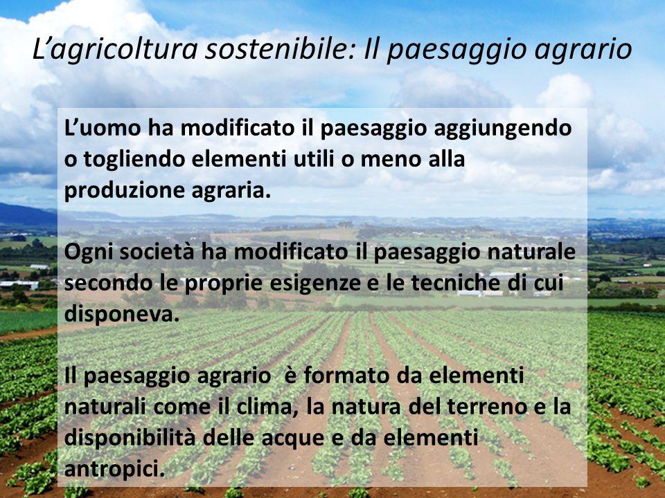 L'agricoltura sostenibile: Il paesaggio agrario