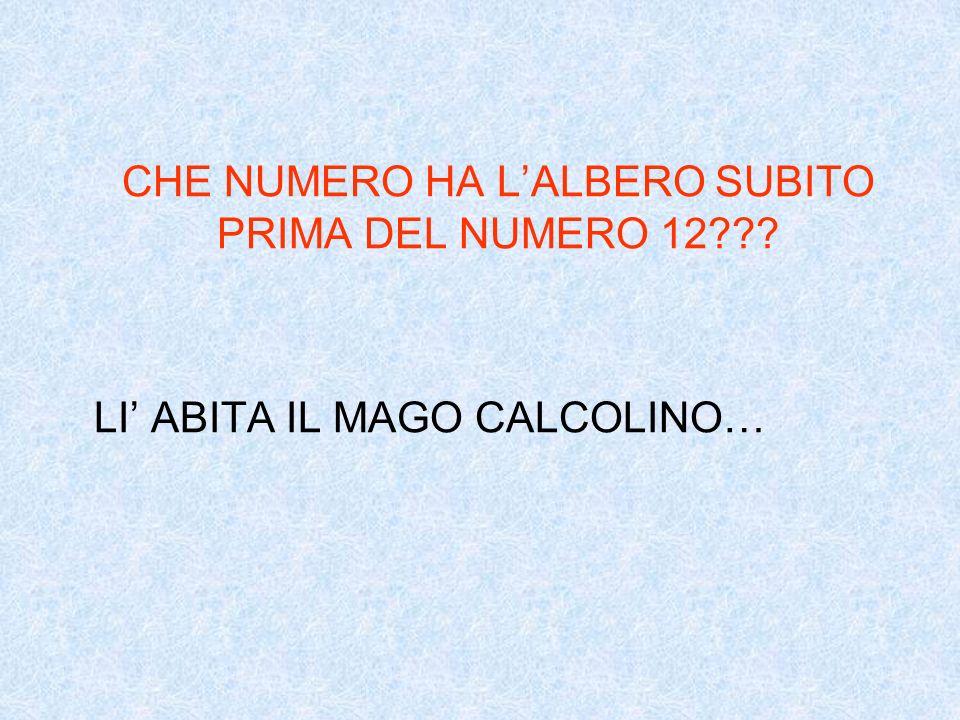 CHE NUMERO HA L'ALBERO SUBITO PRIMA DEL NUMERO 12