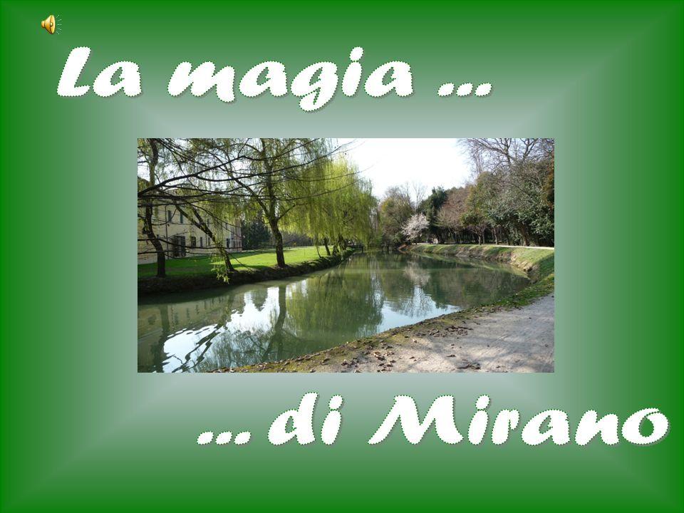 La magia ... ... di Mirano