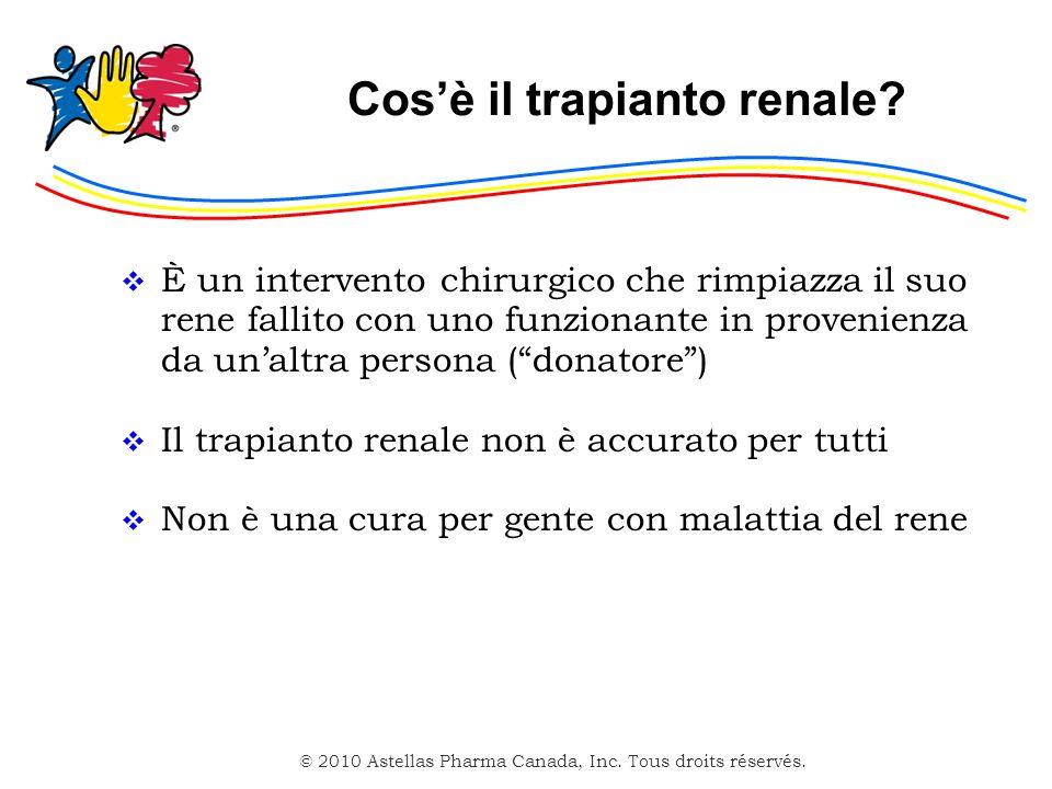 Cos'è il trapianto renale