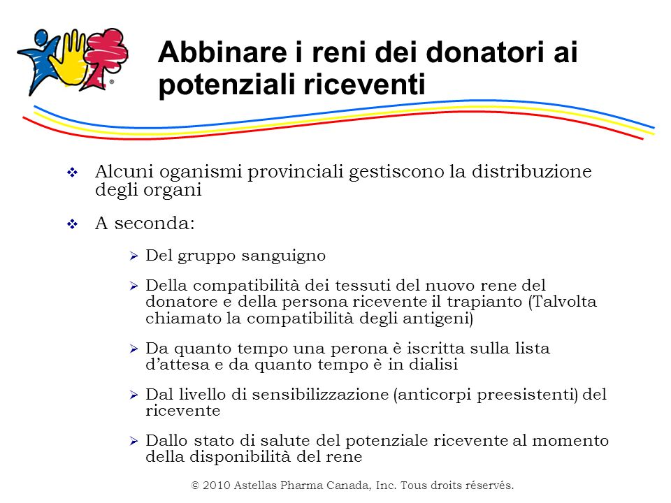 Abbinare i reni dei donatori ai potenziali riceventi