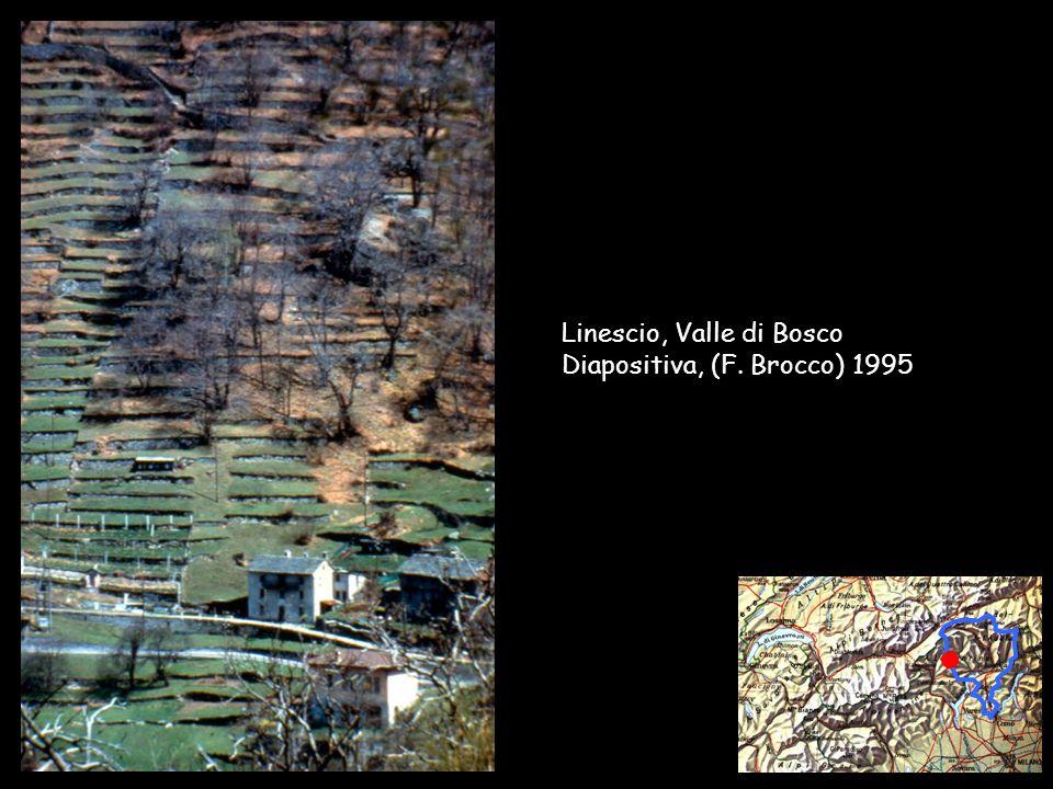 Linescio, Valle di Bosco