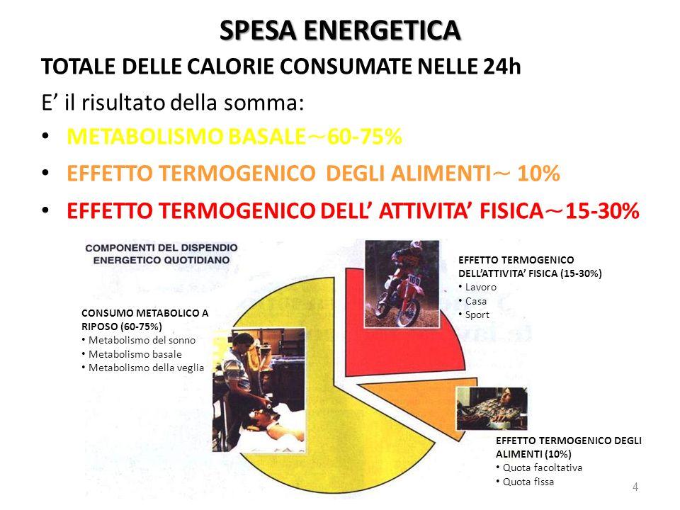 SPESA ENERGETICA TOTALE DELLE CALORIE CONSUMATE NELLE 24h