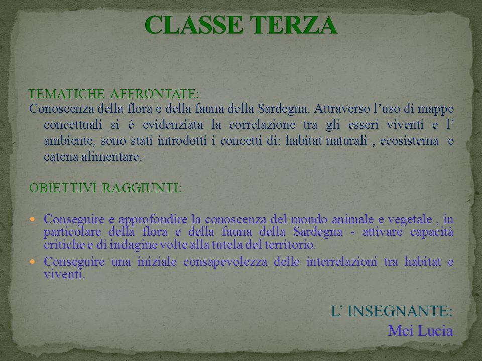 CLASSE TERZA L' INSEGNANTE: Mei Lucia TEMATICHE AFFRONTATE: