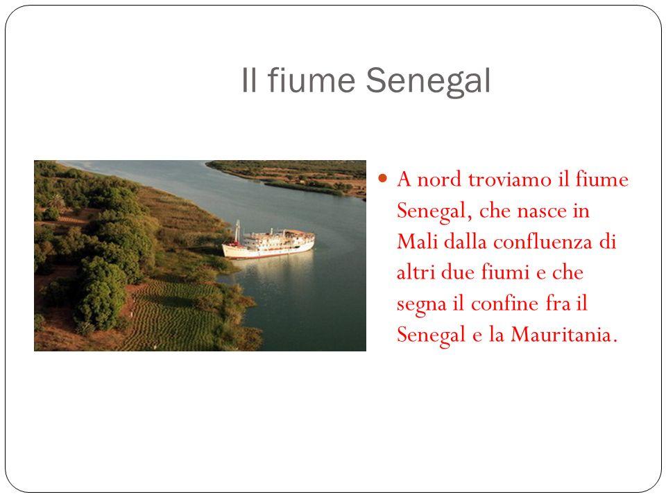 Il fiume Senegal