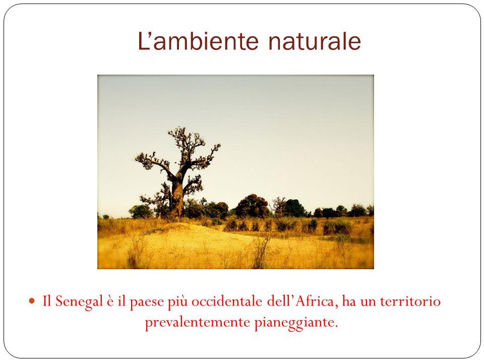 L'ambiente naturale Il Senegal è il paese più occidentale dell'Africa, ha un territorio prevalentemente pianeggiante.