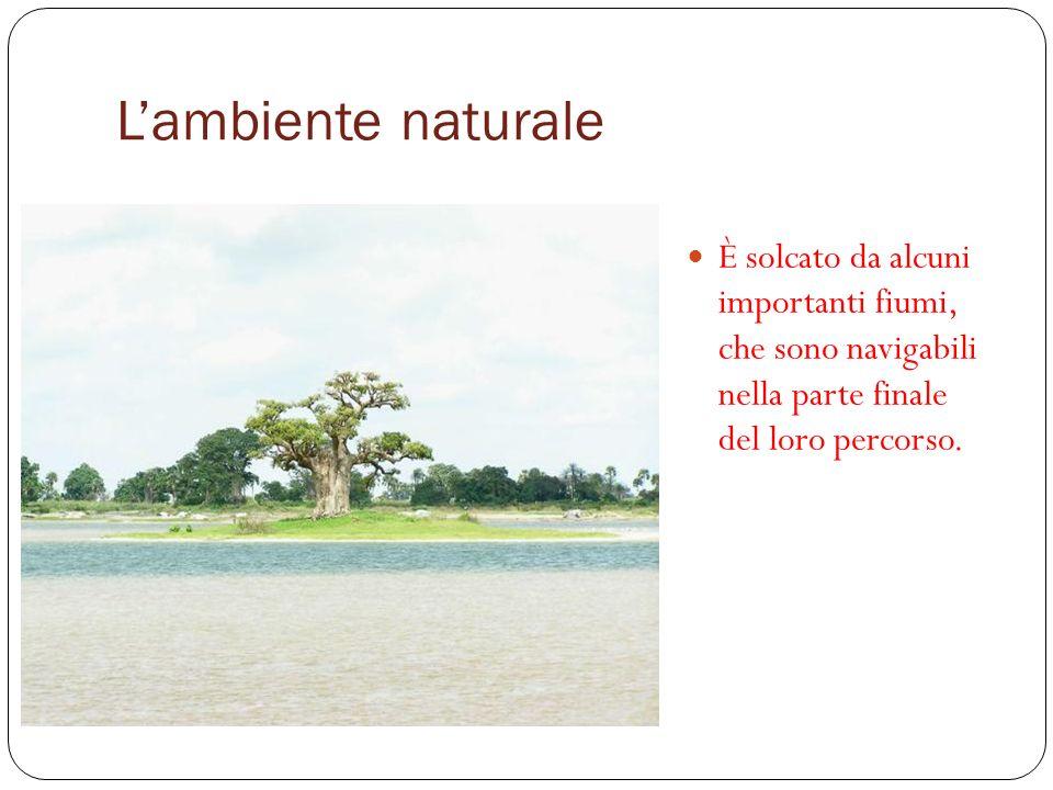 L'ambiente naturale È solcato da alcuni importanti fiumi, che sono navigabili nella parte finale del loro percorso.