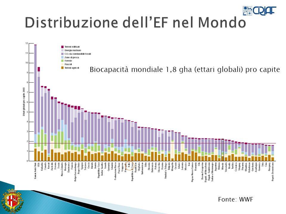 Distribuzione dell'EF nel Mondo