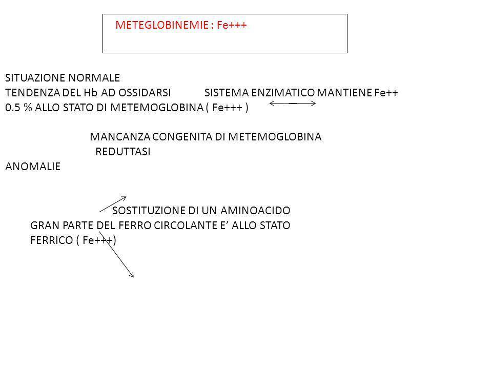 METEGLOBINEMIE : Fe+++