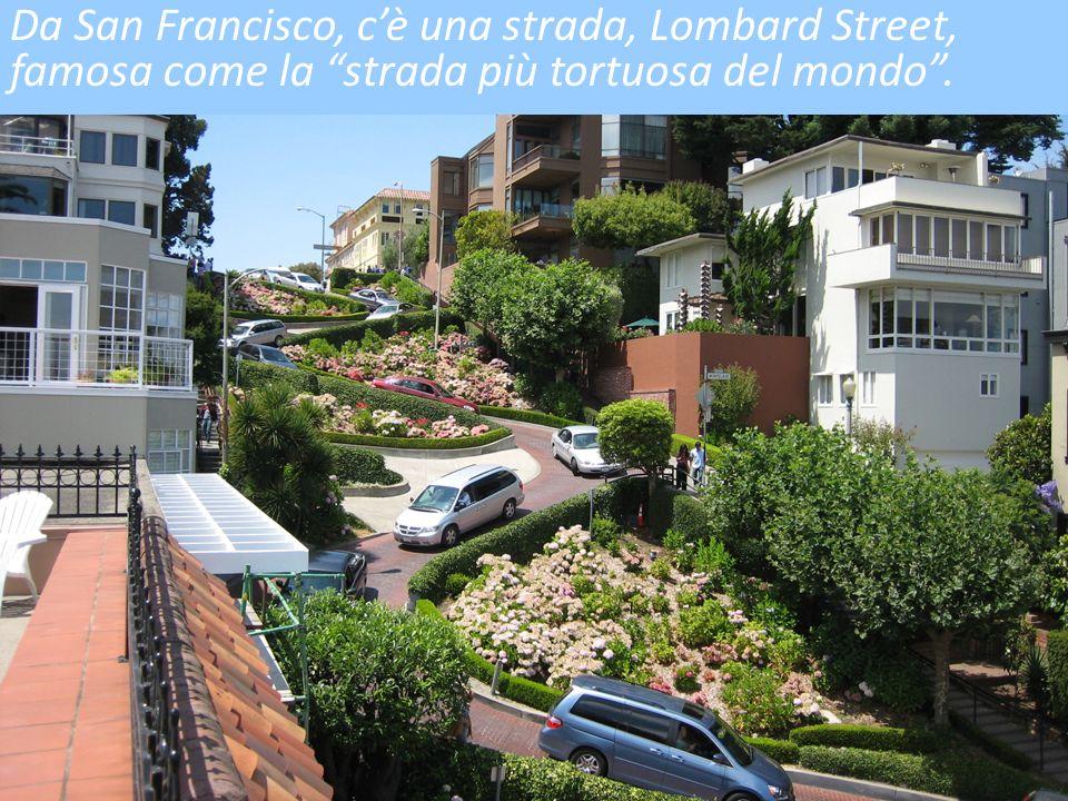 Da San Francisco, c'è una strada, Lombard Street, famosa come la strada più tortuosa del mondo .