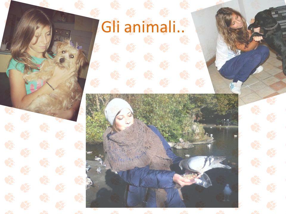 Gli animali..