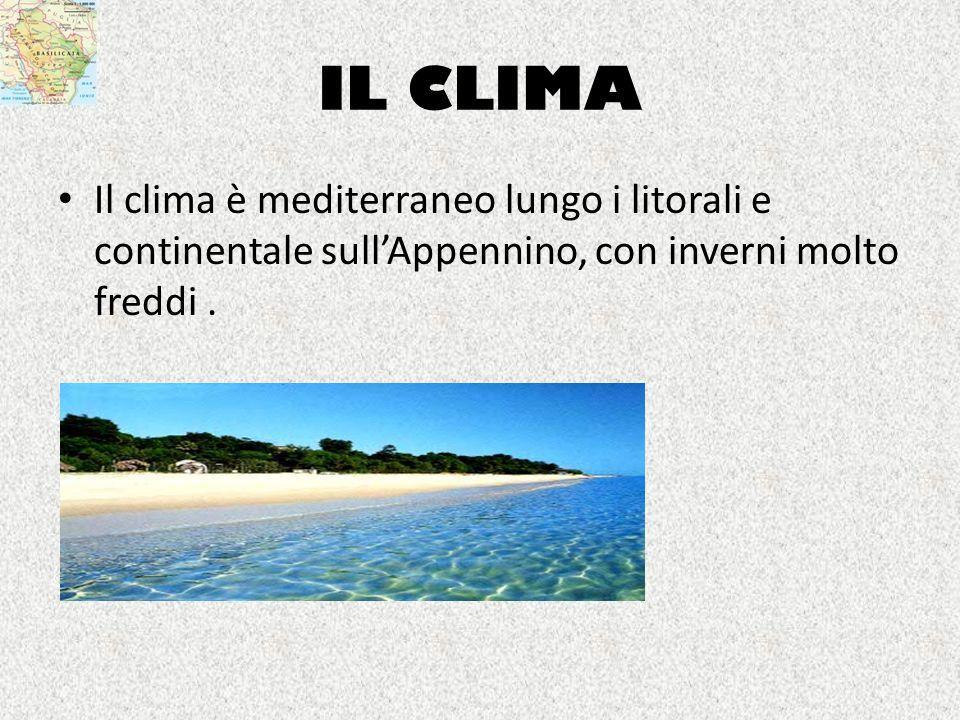 IL CLIMA Il clima è mediterraneo lungo i litorali e continentale sull'Appennino, con inverni molto freddi .