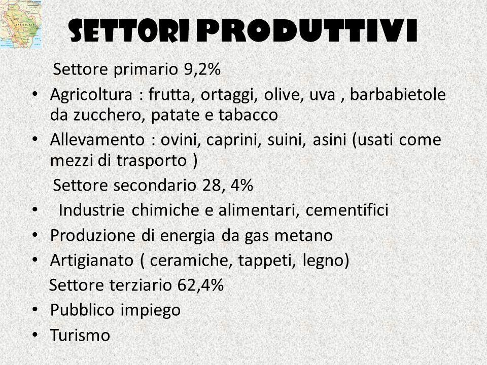 SETTORI PRODUTTIVI Settore primario 9,2%