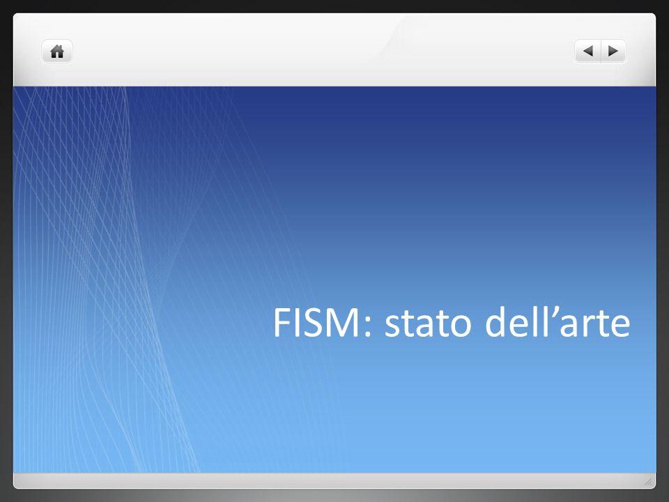 FISM: stato dell'arte
