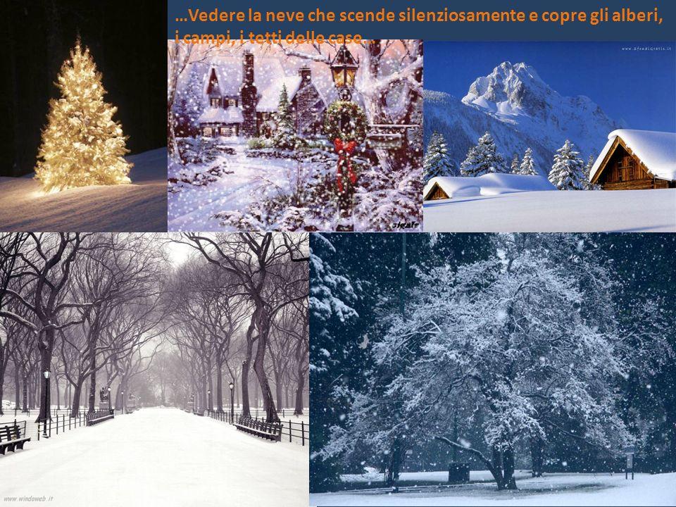 …Vedere la neve che scende silenziosamente e copre gli alberi, i campi, i tetti delle case…