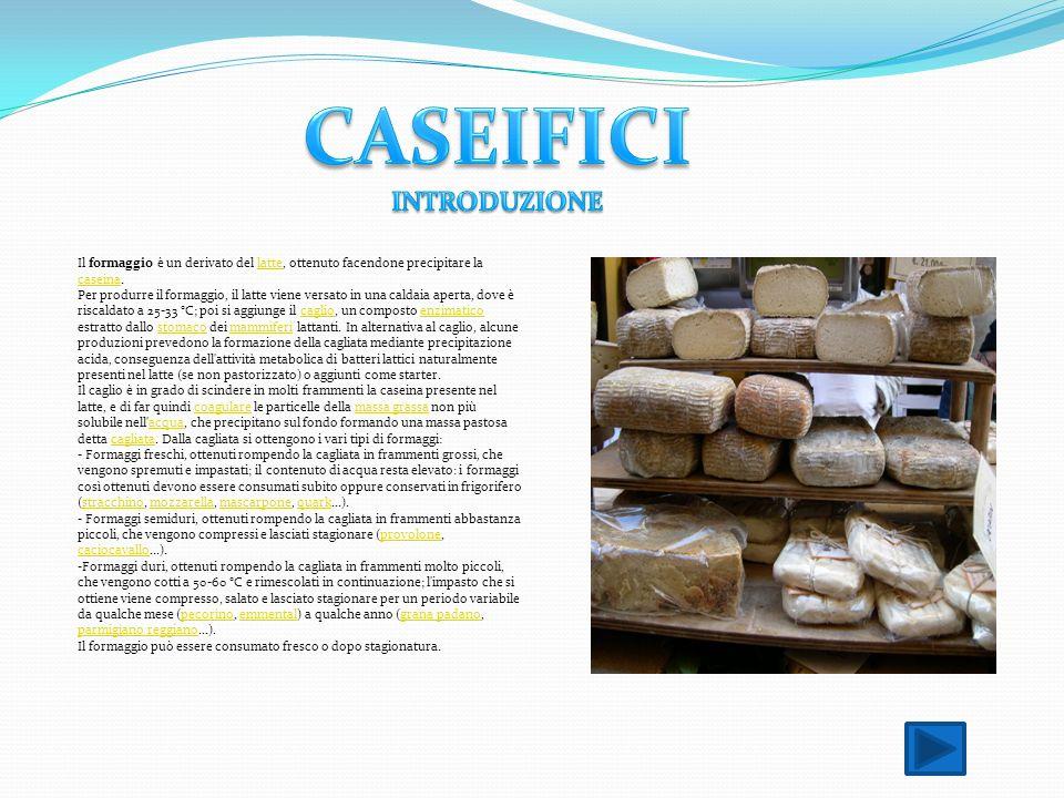 CASEIFICI INTRODUZIONE