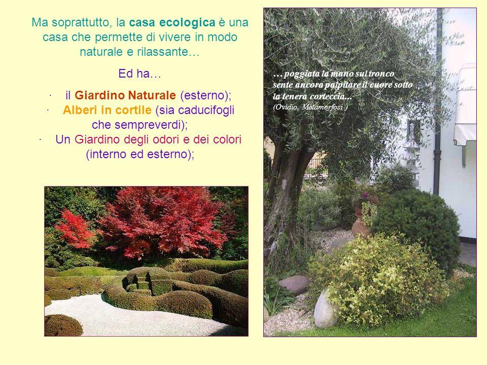 · il Giardino Naturale (esterno);