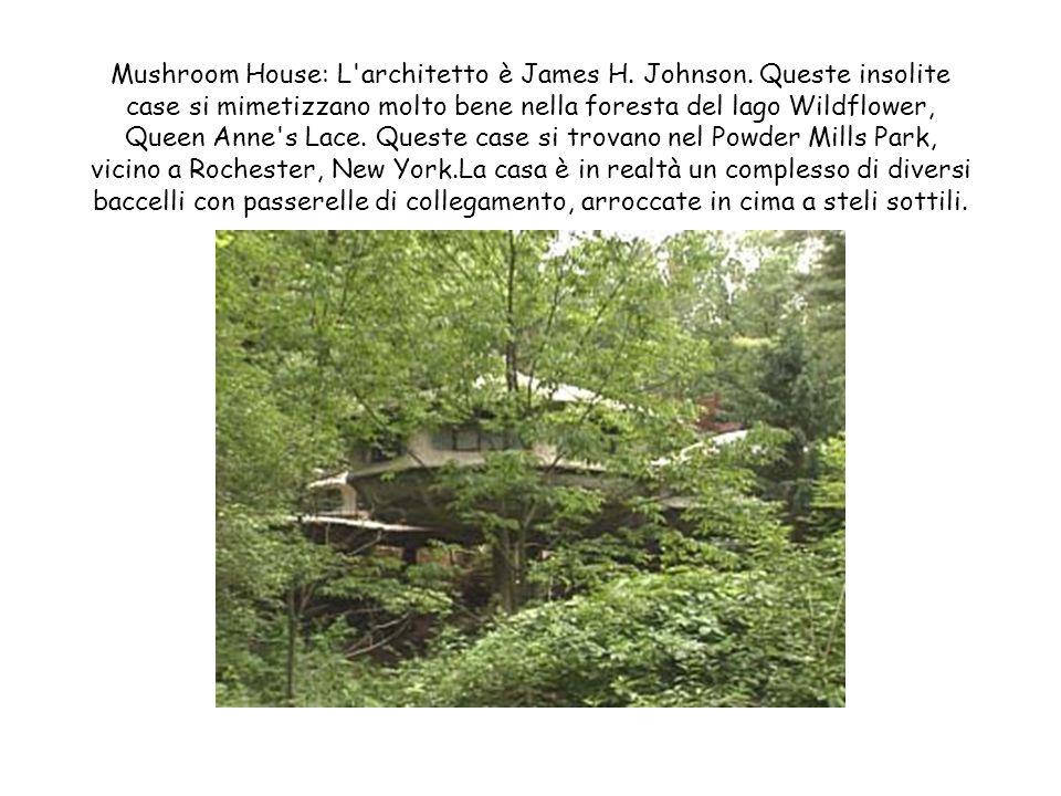 Mushroom House: L architetto è James H. Johnson