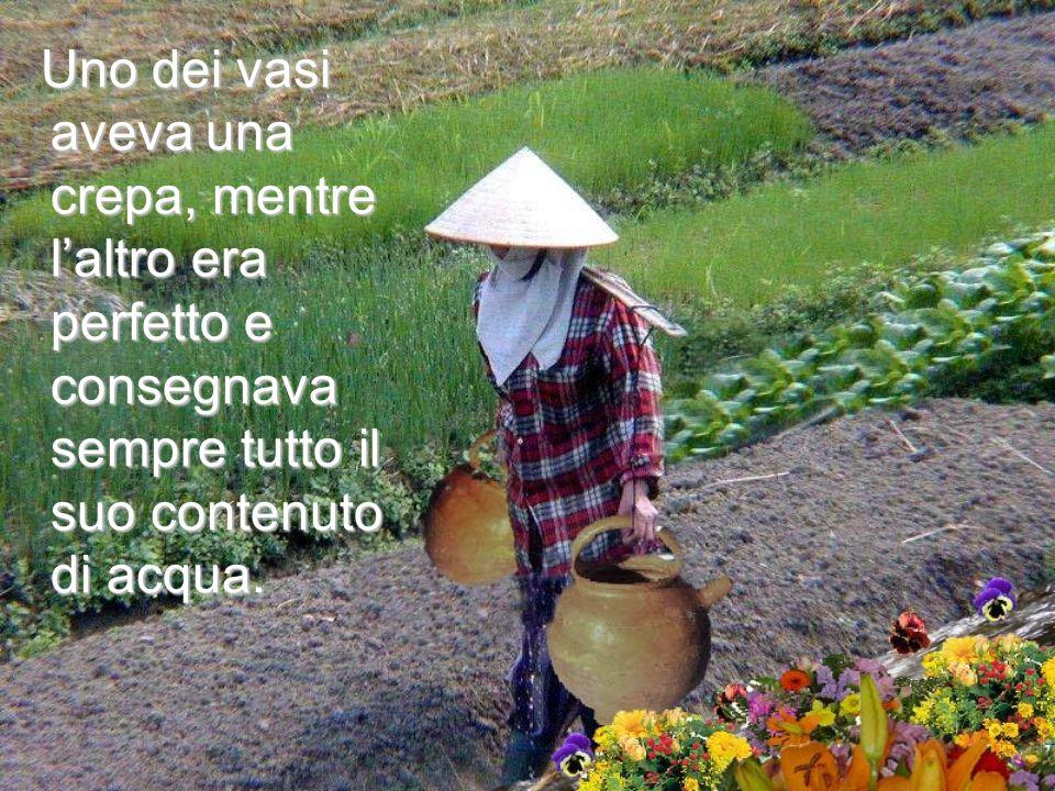 Uno dei vasi aveva una crepa, mentre l'altro era perfetto e consegnava sempre tutto il suo contenuto di acqua.