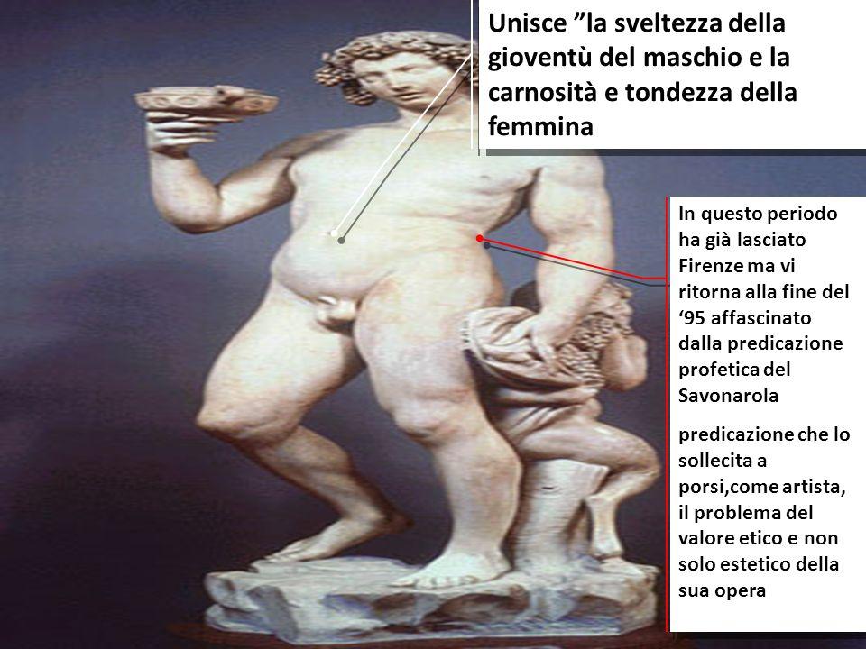 Unisce la sveltezza della gioventù del maschio e la carnosità e tondezza della femmina