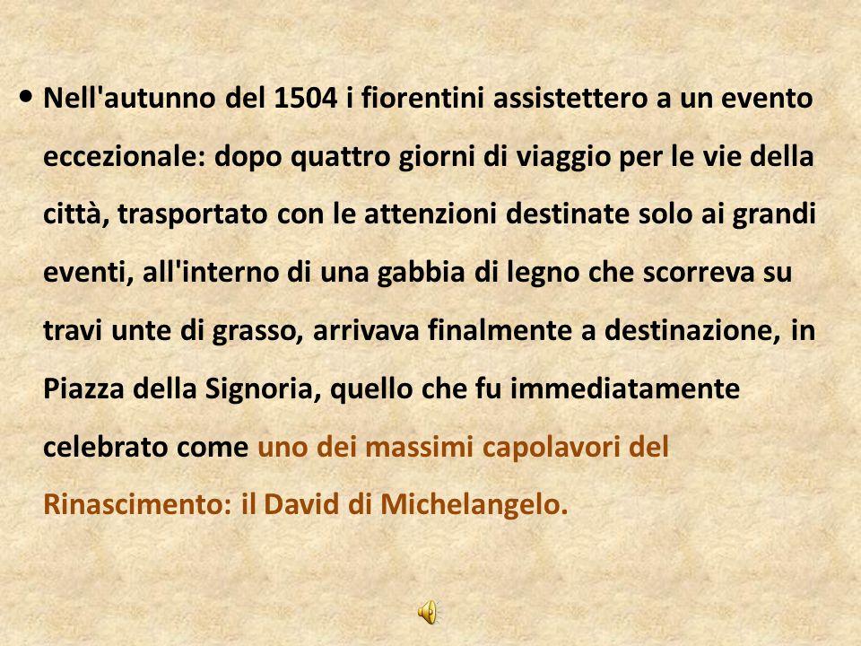 Il David di Michelangelo -