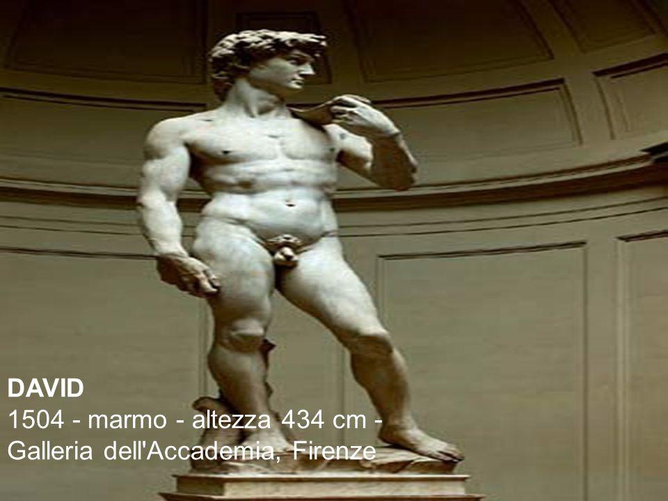 DAVID 1504 - marmo - altezza 434 cm - Galleria dell Accademia, Firenze