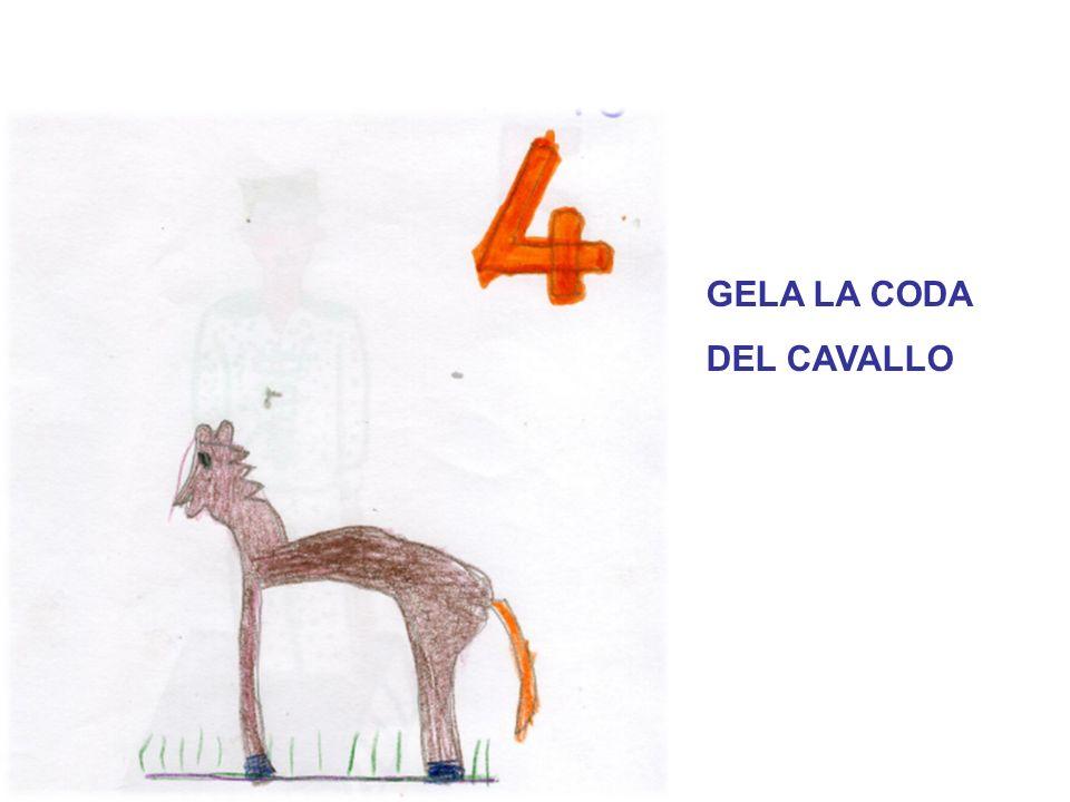 GELA LA CODA DEL CAVALLO