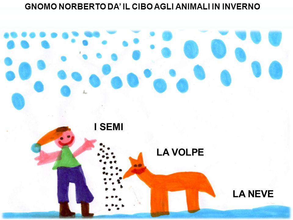 GNOMO NORBERTO DA' IL CIBO AGLI ANIMALI IN INVERNO