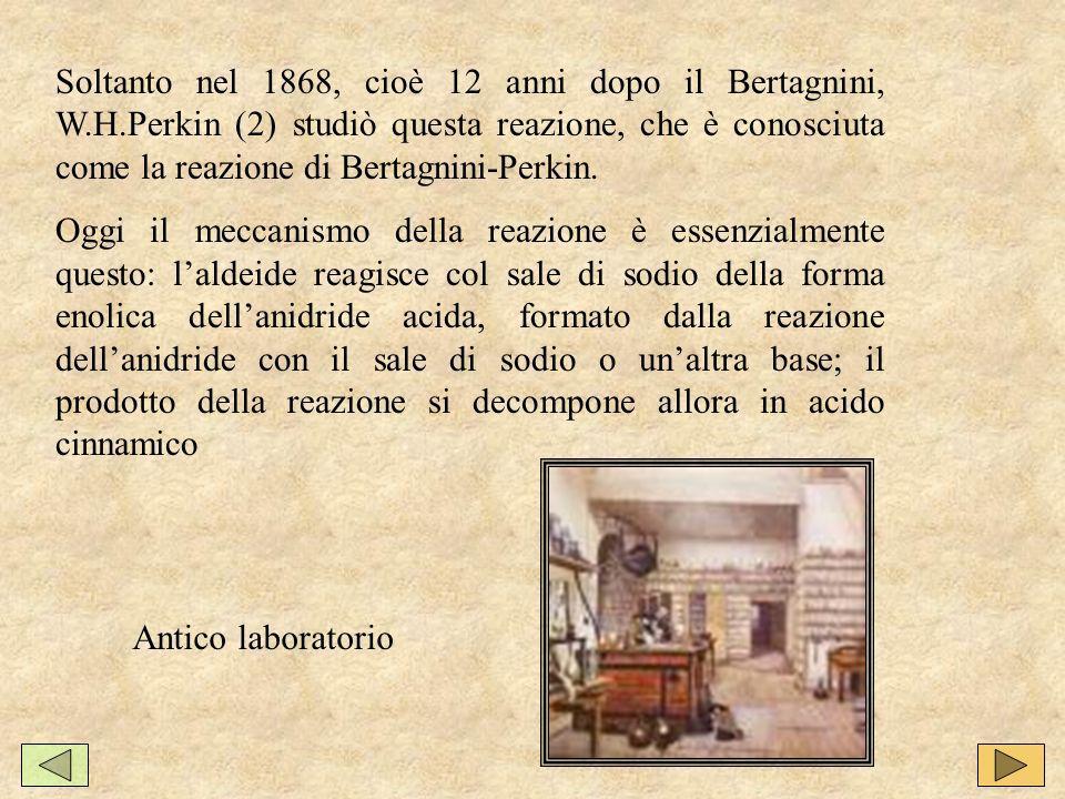 Soltanto nel 1868, cioè 12 anni dopo il Bertagnini, W. H