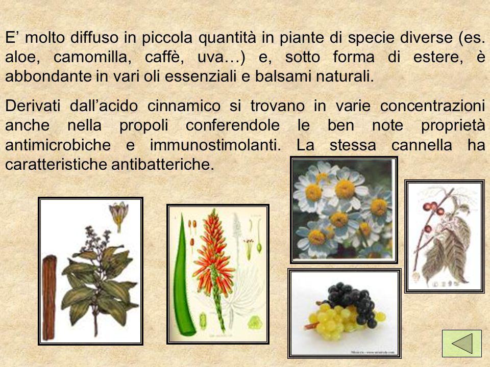 E' molto diffuso in piccola quantità in piante di specie diverse (es