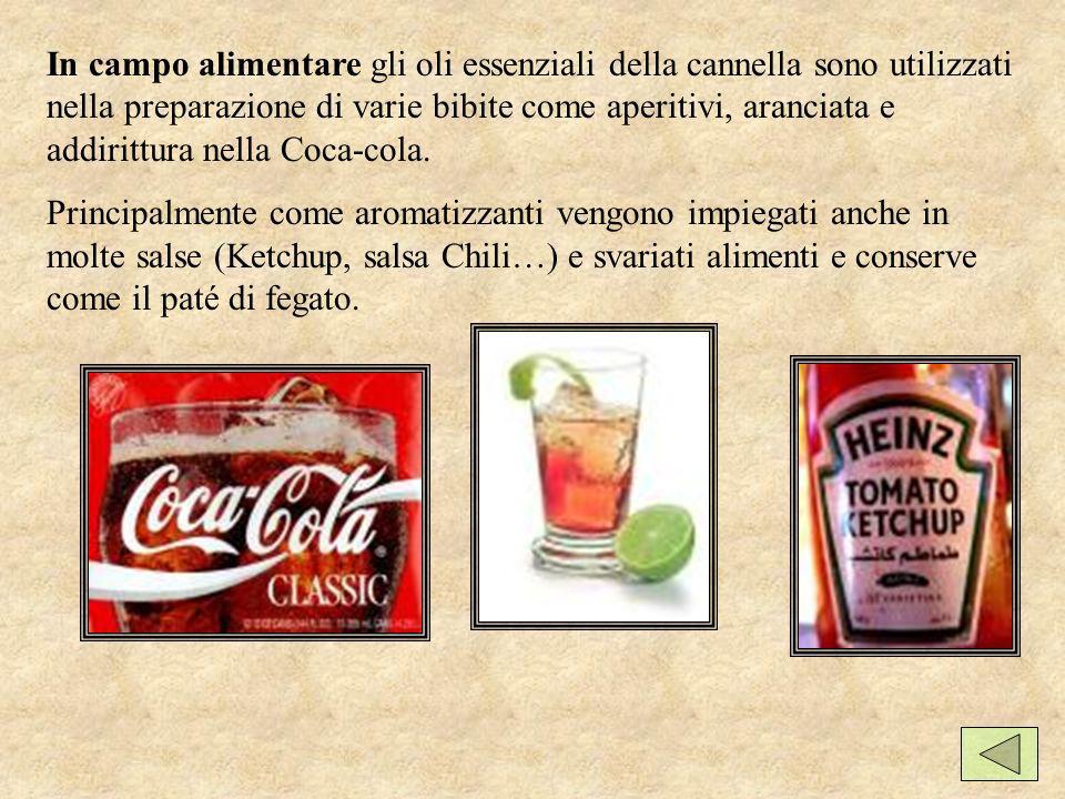 In campo alimentare gli oli essenziali della cannella sono utilizzati nella preparazione di varie bibite come aperitivi, aranciata e addirittura nella Coca-cola.
