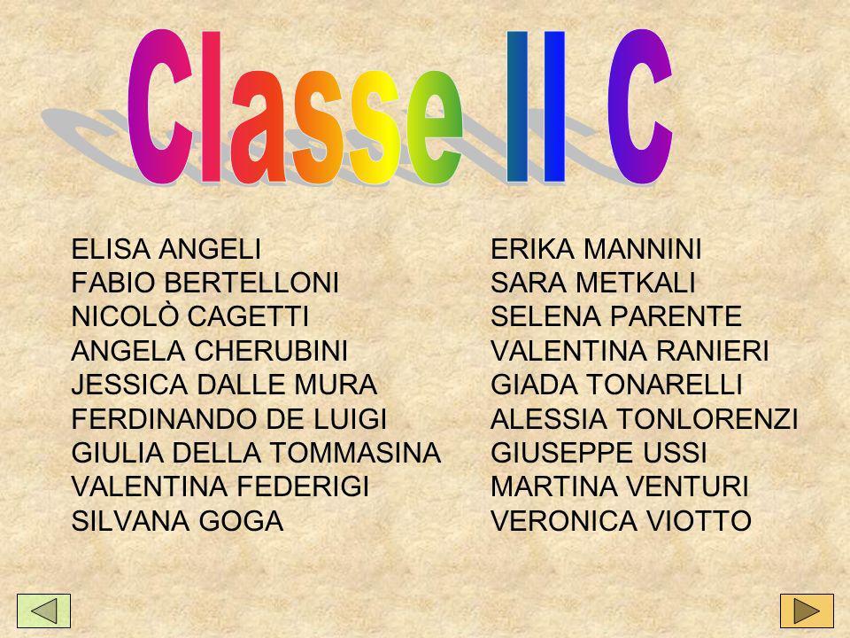 Classe II C ELISA ANGELI FABIO BERTELLONI NICOLÒ CAGETTI