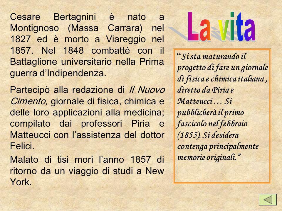 Cesare Bertagnini è nato a Montignoso (Massa Carrara) nel 1827 ed è morto a Viareggio nel 1857. Nel 1848 combatté con il Battaglione universitario nella Prima guerra d'Indipendenza.