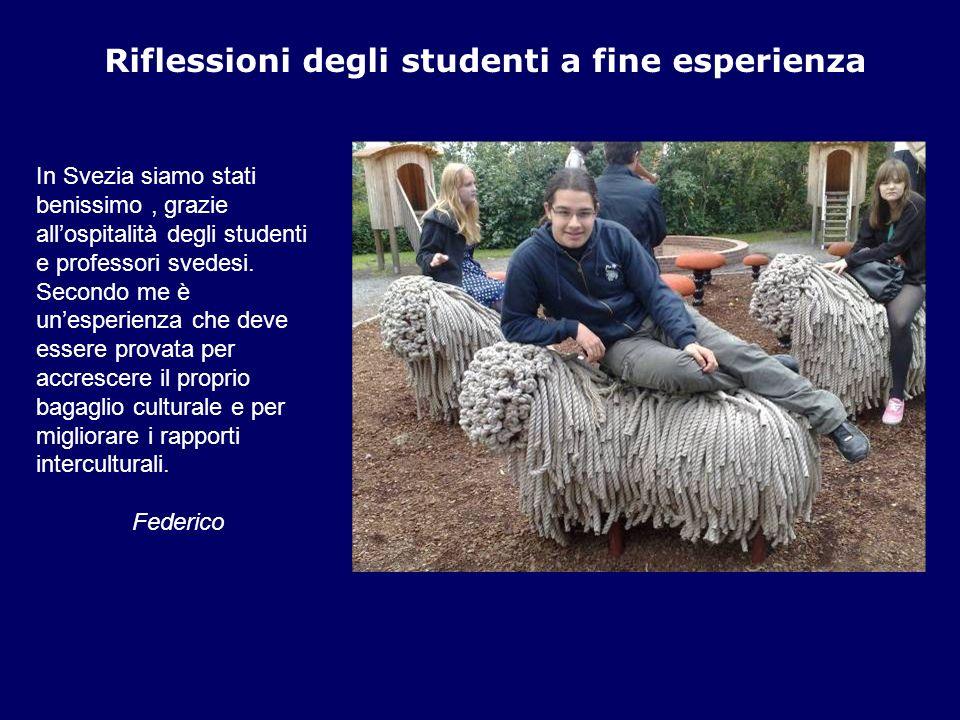 Riflessioni degli studenti a fine esperienza