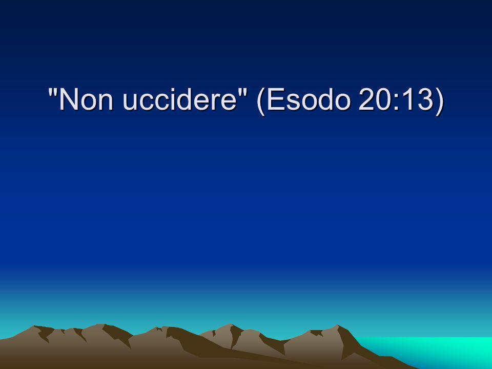 Non uccidere (Esodo 20:13)