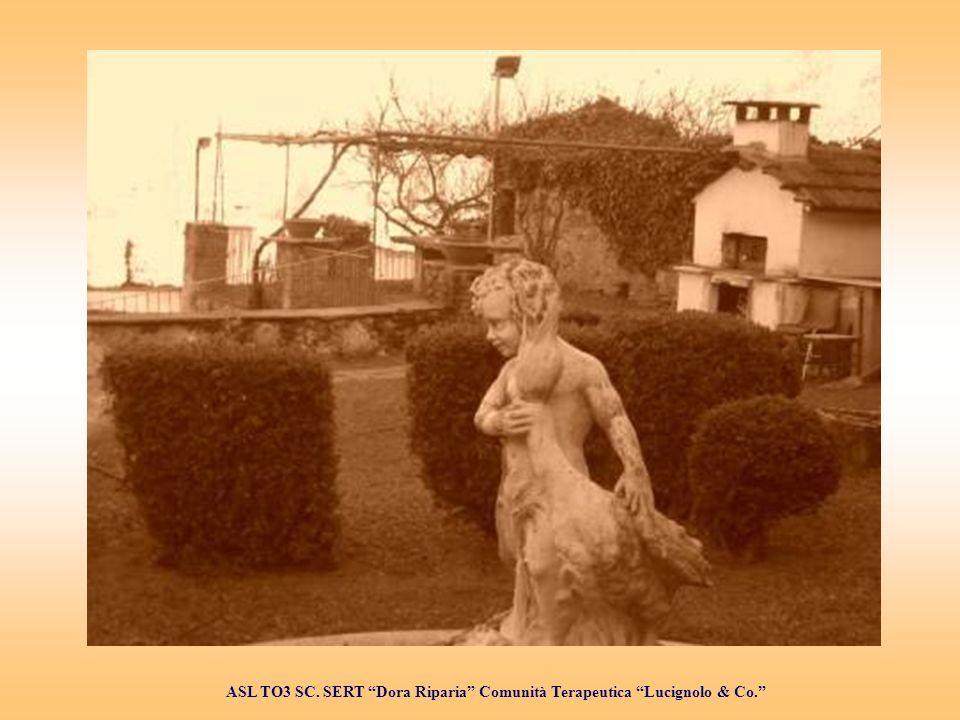 ASL TO3 SC. SERT Dora Riparia Comunità Terapeutica Lucignolo & Co.